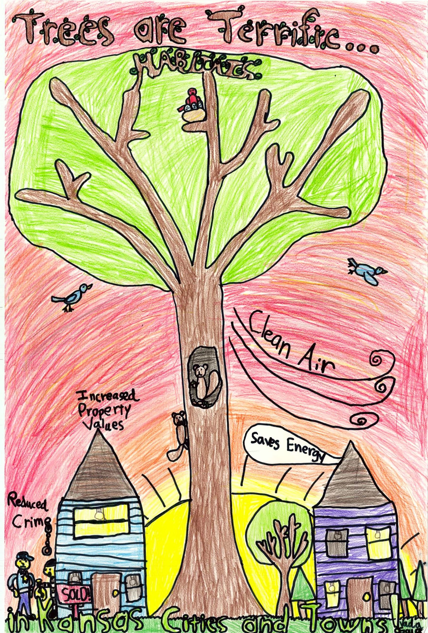 Forestry Drawing Contest Winner