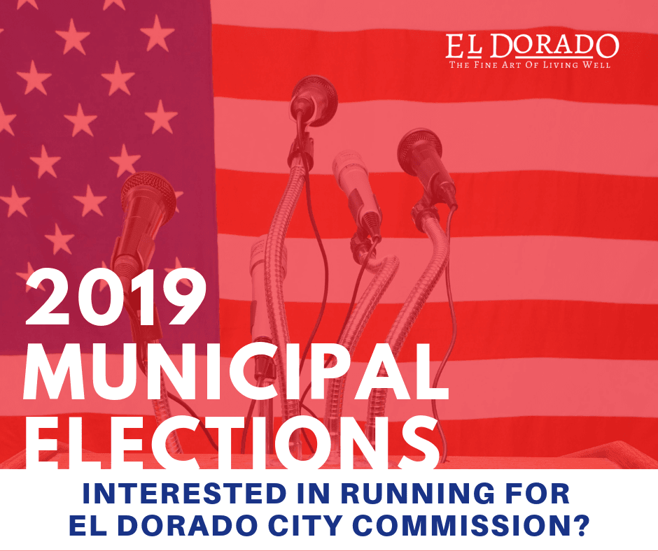 2019 Municipal Elections for website homepage (1)